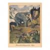 Postkarten__Seite_26