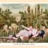 Postkarten__Seite_30