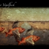 05_vogelfisch