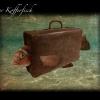 14_kofferfisch