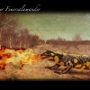 27_feuersalamander
