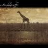 06_giraffe